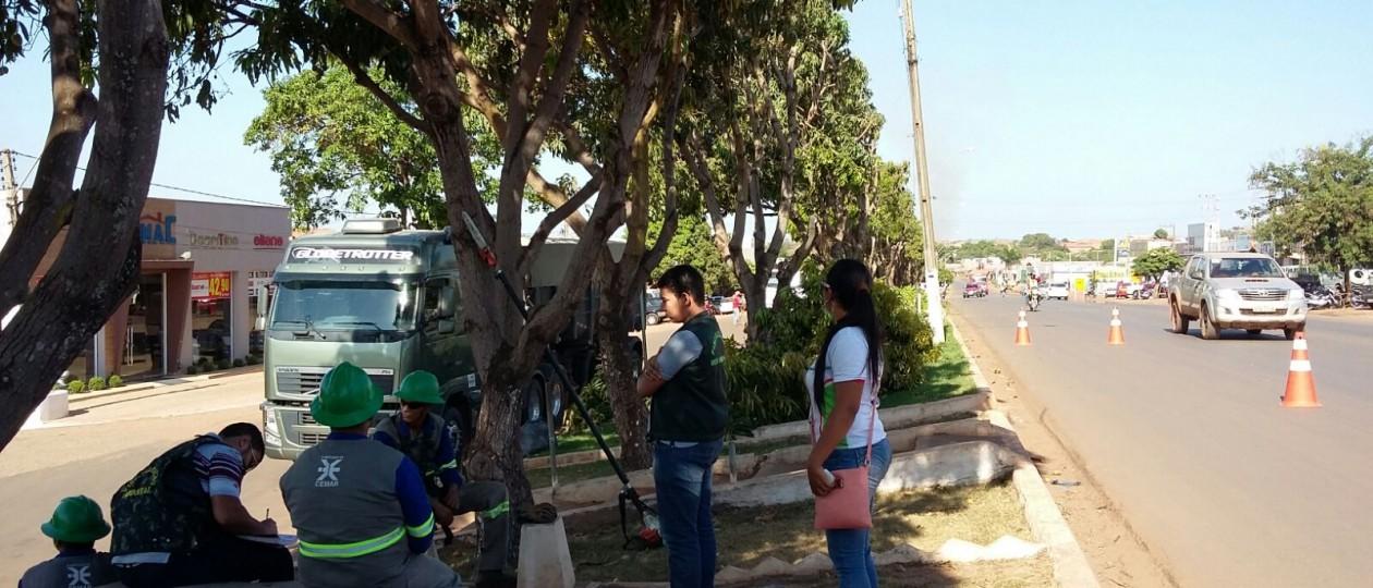 Açailândia: Cemar e DPL são multadas em R$ 70 mil cada por podar árvores sem autorização