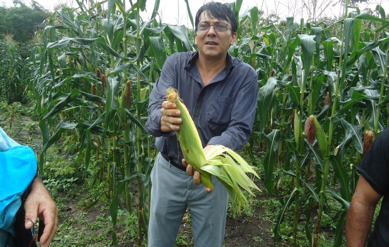 Coopmar recebeu R$ 13,7 milhões da gestão Dr. Lobato em Santa Helena