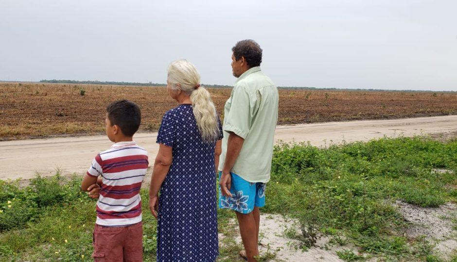 Plantações de soja avançam no leste maranhense com rastro de violência e desrespeito ao meio ambiente